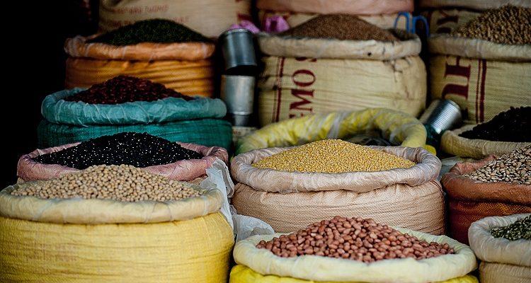 Dlaczego warto jeść nasiona roślin strączkowych?