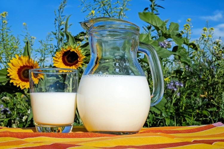 Mleko skuteczny sposób na przeziębienie